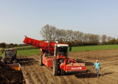 onze boerderij aardappeloogst2